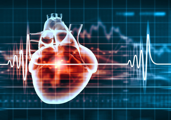 3 Ways to Exercise for a Healthy Heart