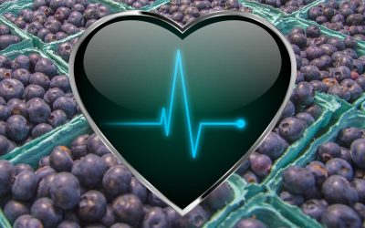 The Power of Blueberries on Blood Pressure