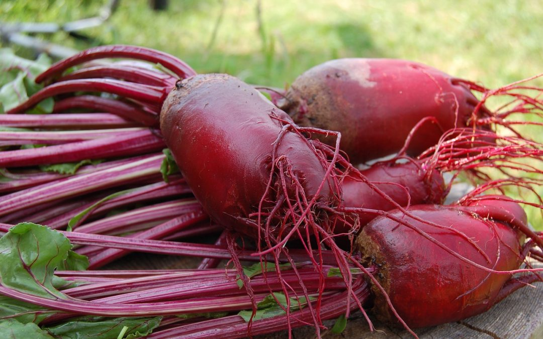 Superfood Spotlight: Beets