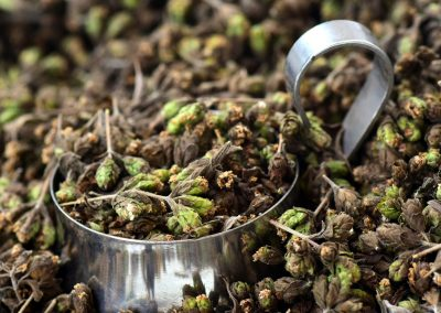 Spice Up Your Health With Oregano